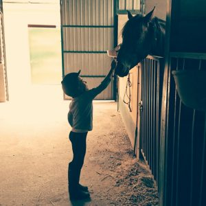 Niña acariciando caballo en el establo